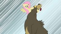 Fluttershy snaps bear's neck S02E03