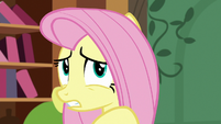 Fluttershy worried about Angel S7E5