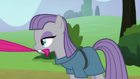 Maud Pie pulls Pinkie back by her tail S8E3
