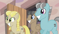 More ponies join Starlight S5E1.png