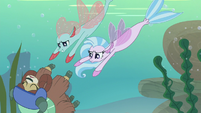 Ocellus and Silverstream swim down to Yona S8E9