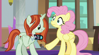 Photographer pulls one of Fluttershy's hairs S8E13