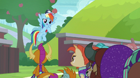 """Rainbow """"I haven't been a great coach"""" S9E15"""