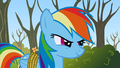 Rainbow Dash Two can play S1E13.png