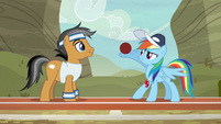 Rainbow balances a ball on her wing S9E6