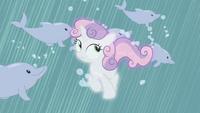 S04E19 Delfiny
