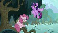 Twilight Sparkle finds fake Pinkie Pie S8E13