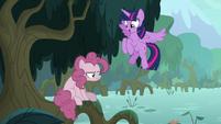 Twilight Sparkle finds fake Pinkie Pie S8E13