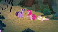 Twilight and Pinkie argue next to Fluttershy S8E13
