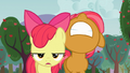 Apple Bloom and Babs frustrated S03E08.png