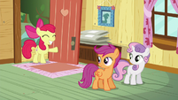 Apple Bloom arrives at the clubhouse S5E4