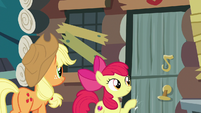 Apple Bloom knocking on Goldie Delicious' door S7E13