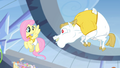 Bulk Biceps flying up to Fluttershy S4E24.png