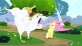 Bulk shouting at Fluttershy S4E10.png