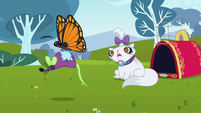 Butterfly carrying toy mouse S2E07