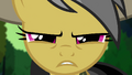 "Daring Do ""I work alone"" S4E04.png"