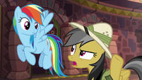 Daring Do --is he always like this--- S6E13