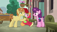 Feather Bangs giving roses to Sugar Belle S7E8