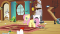 Fluttershy addresses the animals S03E13.png