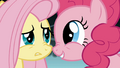 Fluttershy is unconvinced by Pinkie S1E7.png