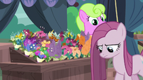 Pinkie Pie walking past Daisy's flowers S8E18