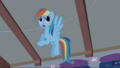"Rainbow Dash ""Here We Go"" S1E09.png"