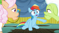 Rainbow Dash -I ruined your trip- S8E5