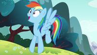 Rainbow Dash getting an idea S6E6