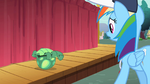 Rainbow Dash sees Tank upside down S2E07