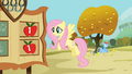Rainbow Dash sits under an apple tree S1E13.png