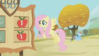 Rainbow Dash sits under an apple tree S1E13