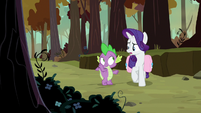Rarity -a few of their feathers- S8E11