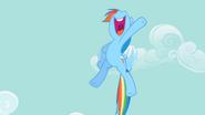 S02E08 Rainbow Dash dumna z sukcesu