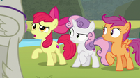"Apple Bloom ""make up your mind"" S8E6"