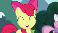 Apple Bloom --any other creature in Equestria-- S6E19