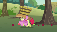 Apple Bloom trotting to catch more falling apples S7E9