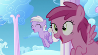 Berry Pinch and a filly sees Twilight flying S5E26