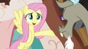 Fluttershy -you're so different from me- S7E12