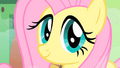 Fluttershy smile S01E22.png