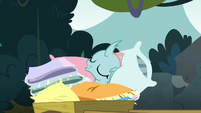 Ocellus lying on top of pillows S8E2