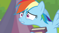 "Rainbow Dash ""what did I do?"" S4E22"