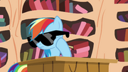 Rainbow wearing sunglasses S4E21