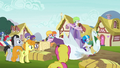 Rarity's swan cart drawing attention S6E14.png