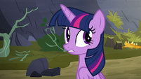 Twilight Sparkle --what was that--- S5E23