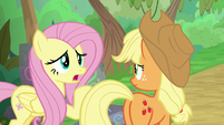 Fluttershy -I wish she'd told us- S8E23