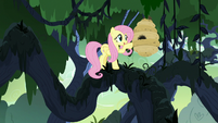 Fluttershy flies up to the flash bees' hive S7E25