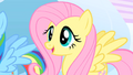 Fluttershy supportive S1E16.png