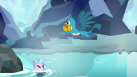 Gallus flying over Silverstream S8E22