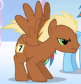 Pegasus Meadow Song S1E16.png