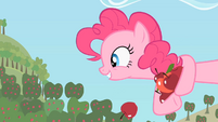 Pinkie Pie I want S2E13